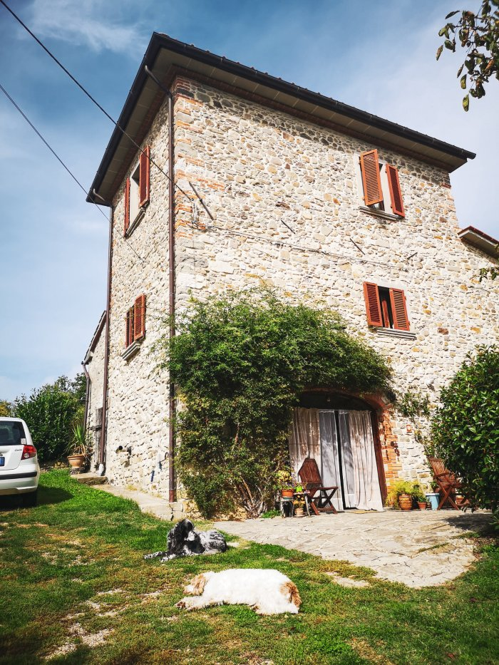 Tuscany farm house and dogs with car - How_To_Prepare_For_A_House_Sit_Including_Essential_Packing_List_By_House_Sitters_Hoopla_Adventures