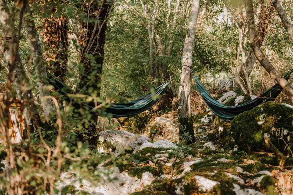 hammocks at hoopoe glamping are the escape in nature