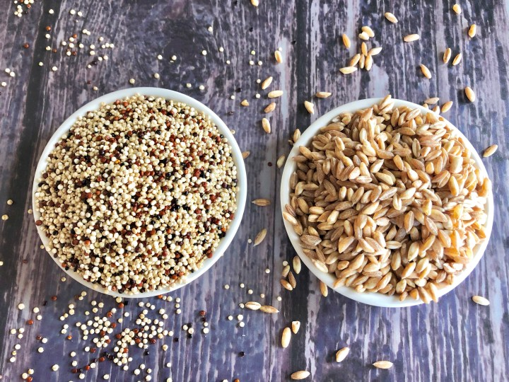 2 small white bowls -one containing quinoa and the other farro