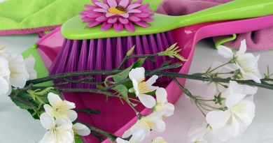 Spring Cldeaning Tips and Checklist - Hooray for Moms