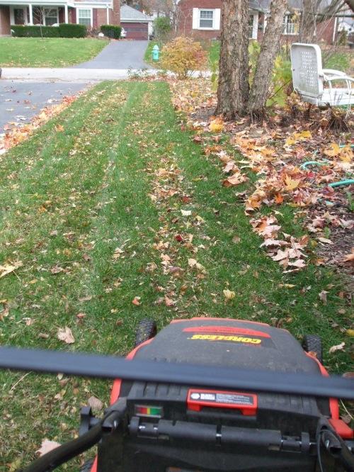 What Best Way Rake Leaves