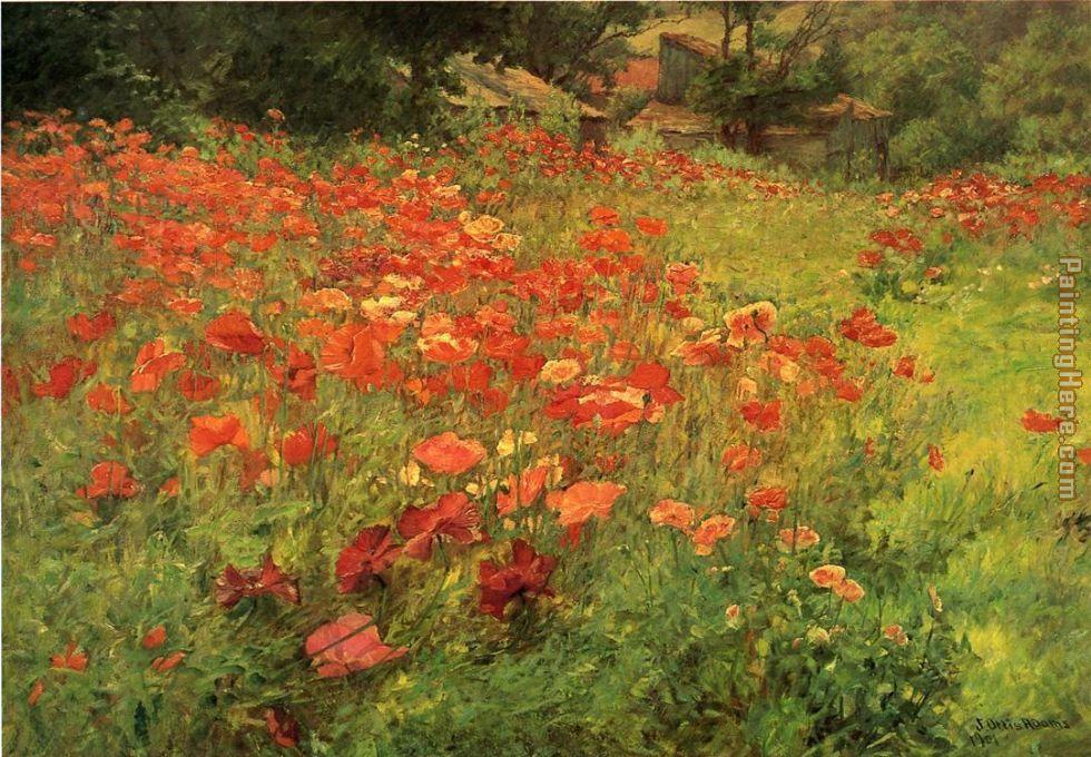 In Poppyland