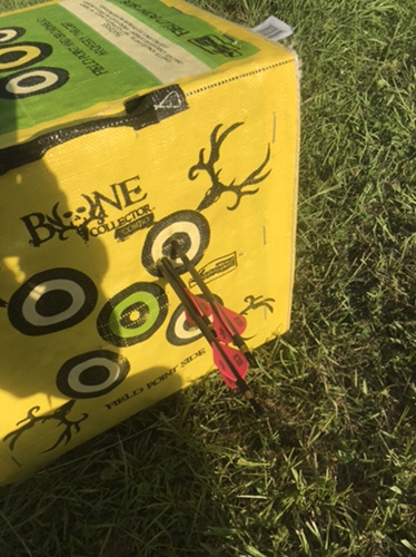 Bowhunting practice shots