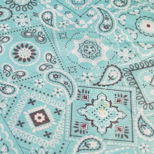turquoise_paisley
