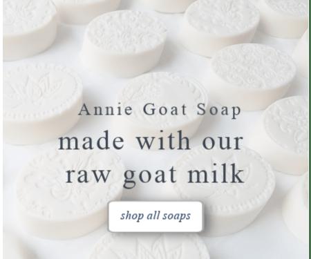 soap_shop_box