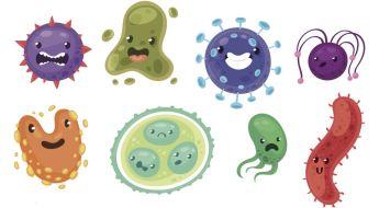 Ultimate Kids' Guide to the Coronavirus