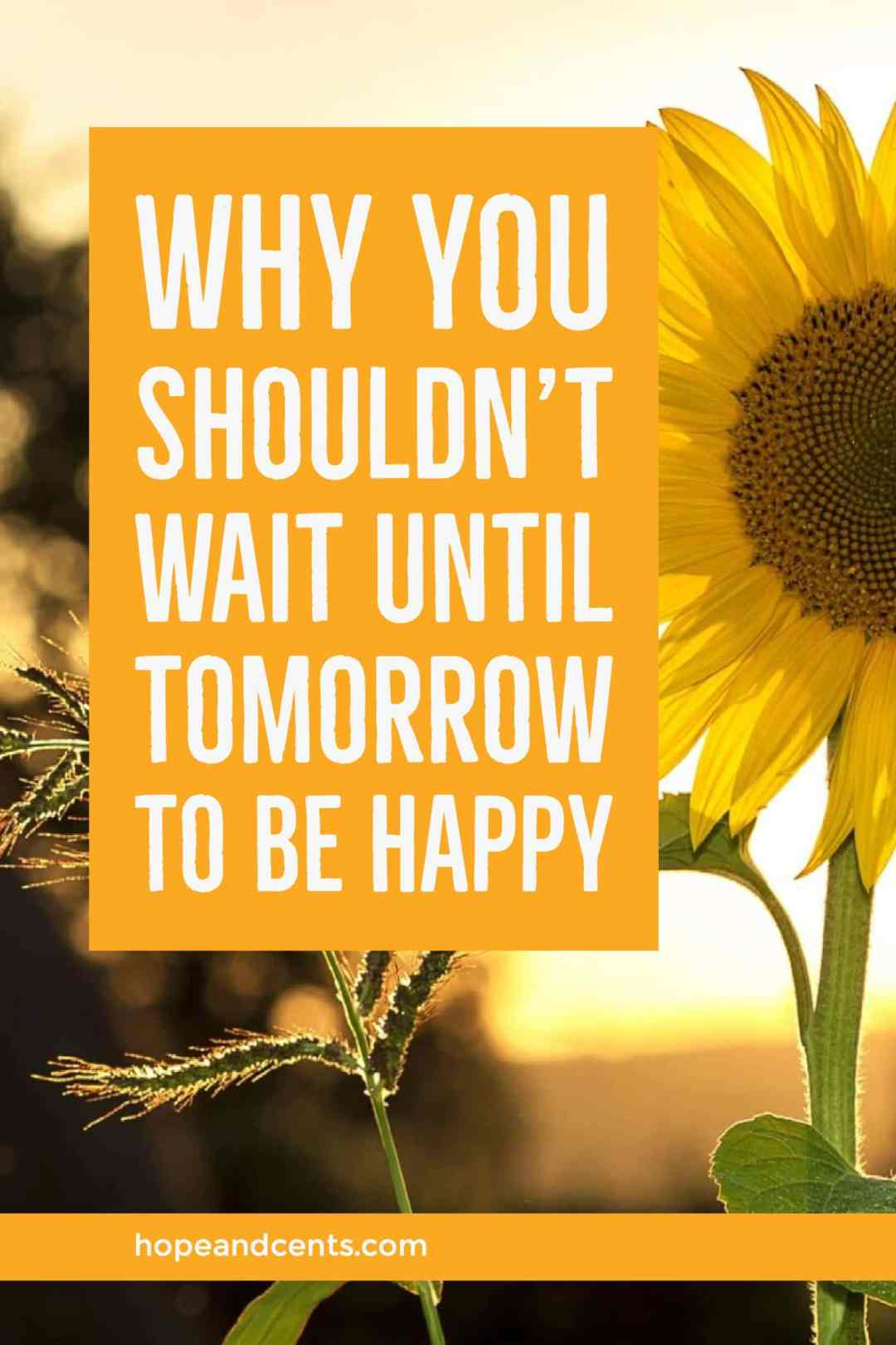 Believing you'll be happy only when certain conditions are met is harmful to the joy you could be experiencing today.