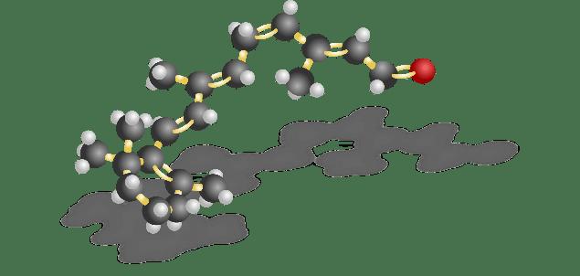 Cis Rhodopsin Structure