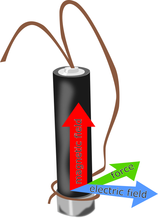 The forces involved in the homopolar motor you've made