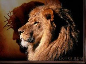 Lion of Judah Jesus