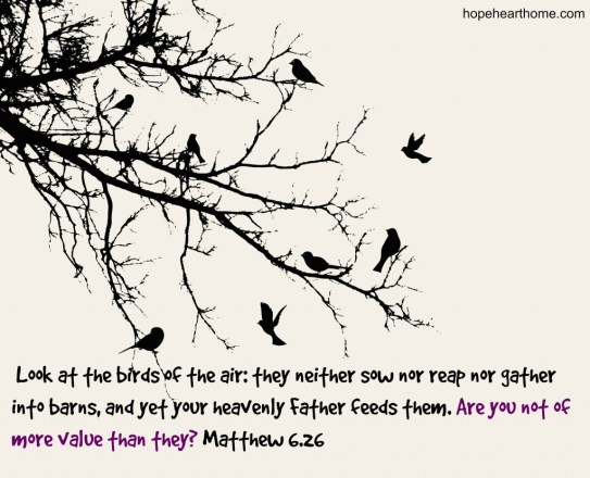 Matthew_6_26