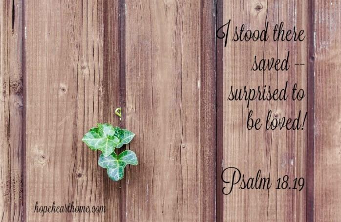 Ivy Psalm 18_19