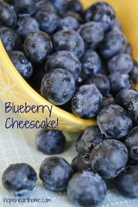 tasty tuesday: blueberry cheesecake
