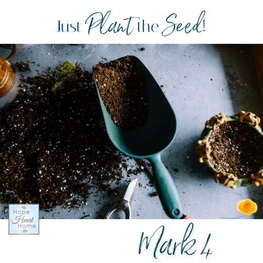 Just Plant the Seed!