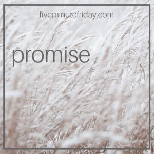 Kate said promise