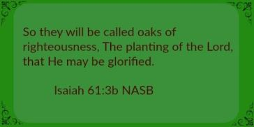 The planting of the Lord