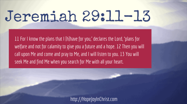 Jeremiah 29_11 God has a plan for your future. Homeschooling with Special needs goes better when we Trust in the Lord