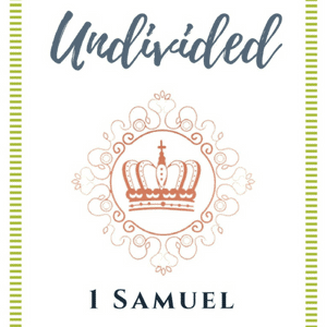 Undivided, customizable Devotional Bible Study Each of the 14 devotions provides in-depth commentary, questions to focus on God's truth, a specific prayer based on the Scriptures, and a simple step of faith to encourage tangible action in your journey of prayer. This prayer devotional is sure to help you grow in familiarity with Old Testament themes and the characters in 1 Samuel. #Giveaway #ChristianBooks #BibleStudy #ChristianMarriage #JoyInMarriage