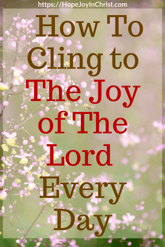 How To Cling to The Joy of The Lord Every Day PinIt #ChristianLiving #TheJoyOfTheLord #TheJoyOfTheLordIsMyStrength #TheJoyOfTheLordquotes #TheJoyOfTheLordScriptures #TheJoyOfTheLordart #Joy #JoyScriptures #JoyQuotes #prayerWarrior #JoyPrayer #JoyCards