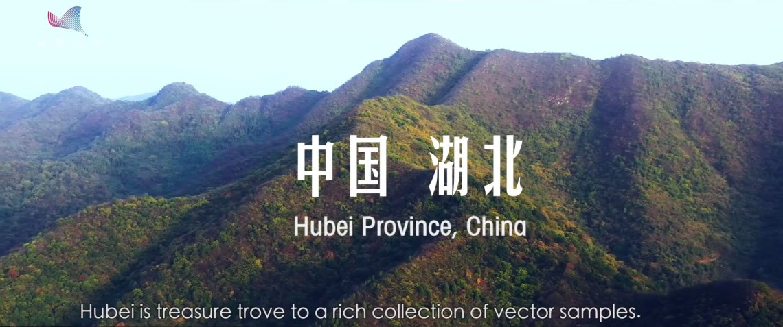 Youth-in-the-Wild---Invisible-Defender_Hubei_province