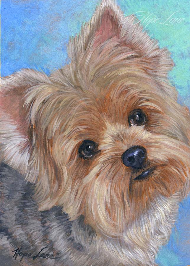 Hope Lane Art Custom Pet Portraits And Custom Portrait