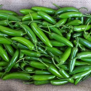 Pepper 'Serrano'
