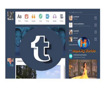 Top 6 Social Media Platform