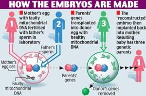 Children With DNA From 3 Parents!