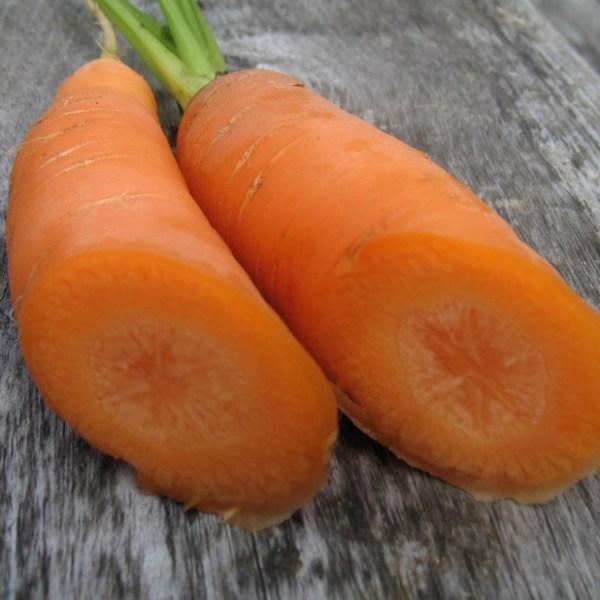 Carrot - Imperator