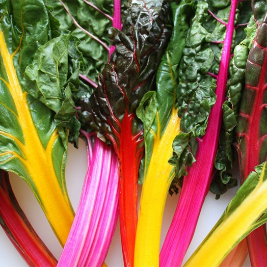 Chard - Rainbow Chard | Organic |