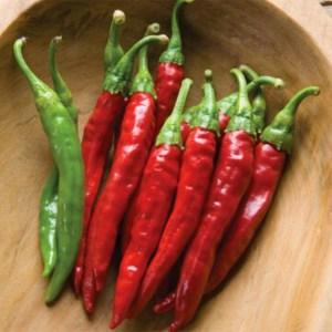 Hot Pepper - Red Rocket   Organic  