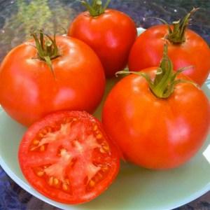 Tomato, Beefsteak - Cosmonaut Volkov
