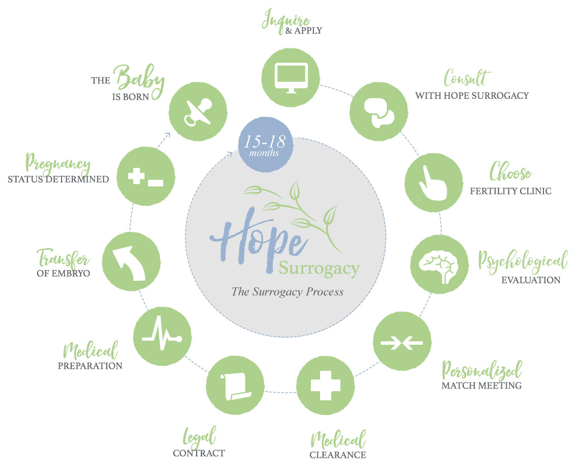 Hope Surrogacy Timeline Infographic