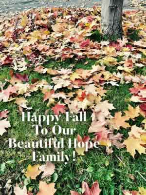 hope-surrogacy-happy-fall-2108