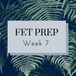 FET Prep Week 7: Food Plan, Medical Debt, Post-op Follow-up, & Imagining Motherhood