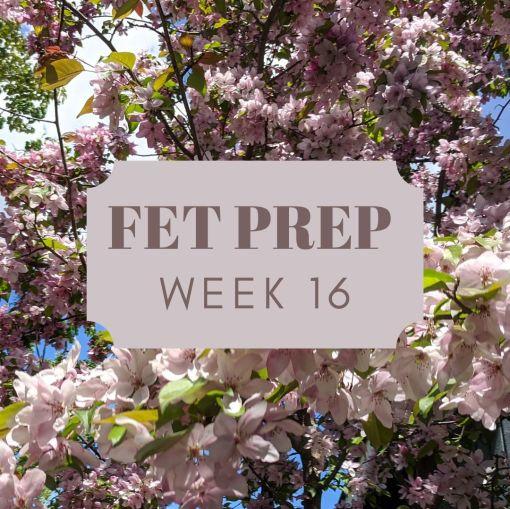 FET Prep_ Week 16