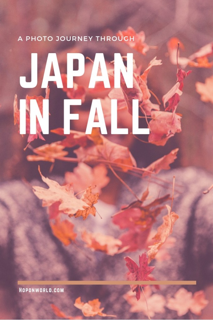 Fall in Japan - Are you looking for some #fall #inspiration? Check out our #photojourney through the most colourful #fall scenes in #japan. We highlight all our favourite fall spots in #kansai, so get ready to experience fall at its very best! #travel #asia #travelinfall #fallinspiration #autumn #kyoto #autumnkyoto #nara #arashiyama #autumnleaves