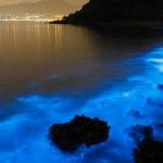 """Hoppics.com - Eerie Blue Glow"""