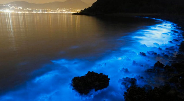 Eerie Blue Glow