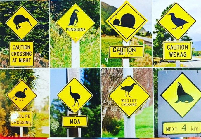 New Zealand Road Signs