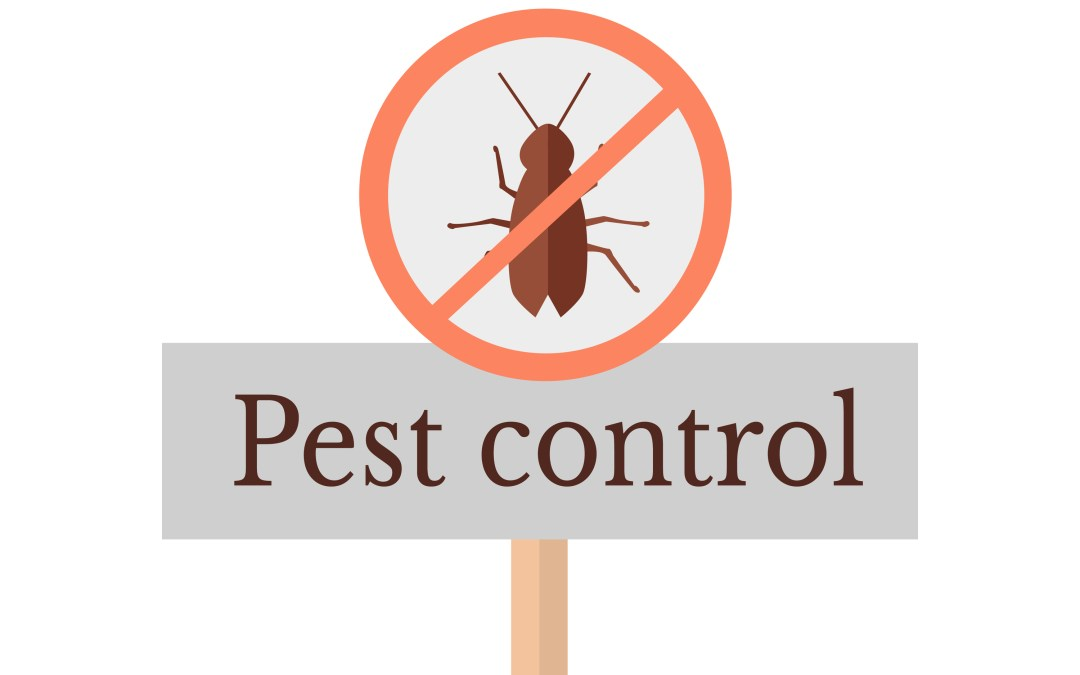 Advice On Daycare Center Pest Control