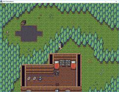 forestshot2