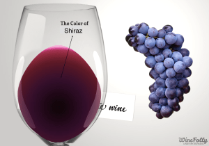 Shiraz-wine-guide