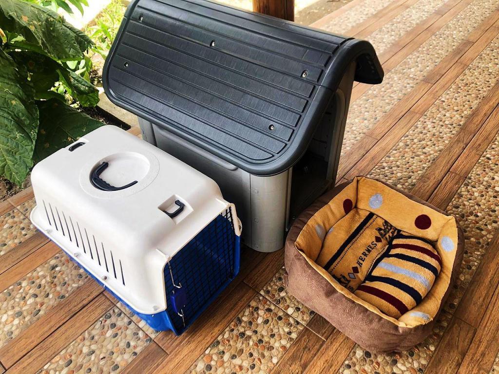 Estos accesorios para mascotas son algunos de los productos que se ofrecen para intercambiar en esta comunidad.