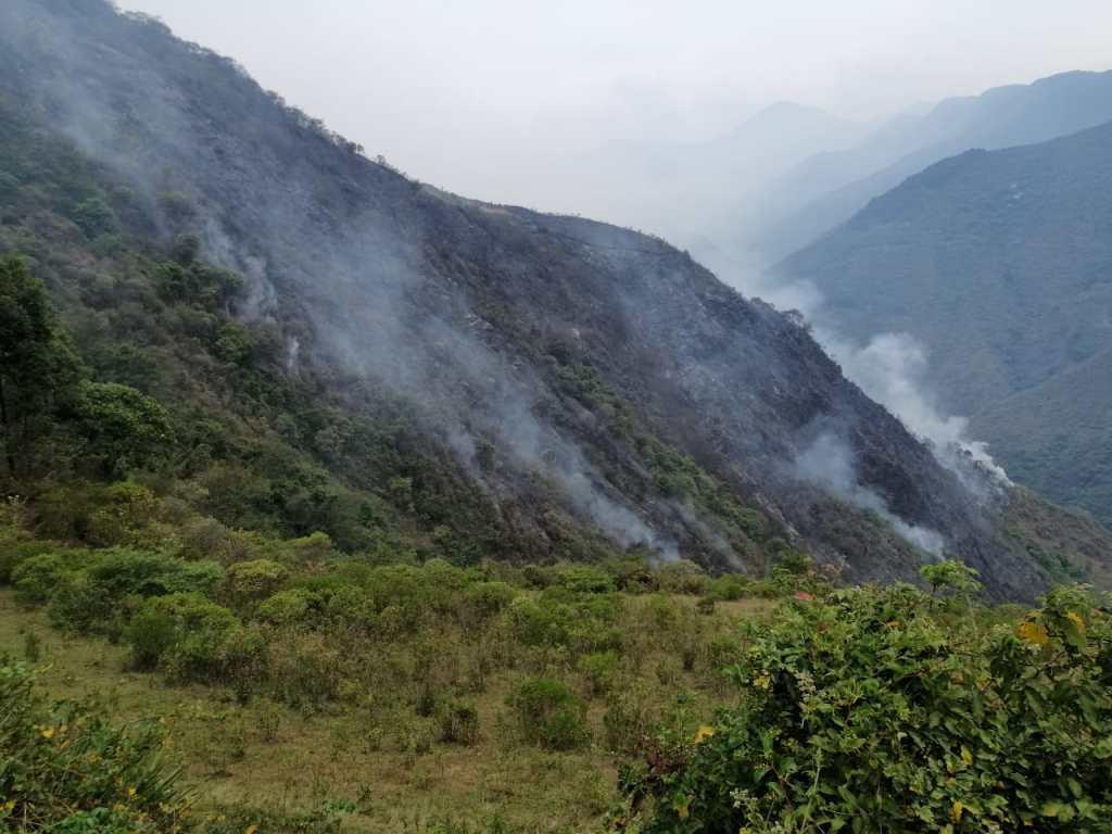 Al momento, no se puede establecer el número de hectáreas arrasadas por las llamas.