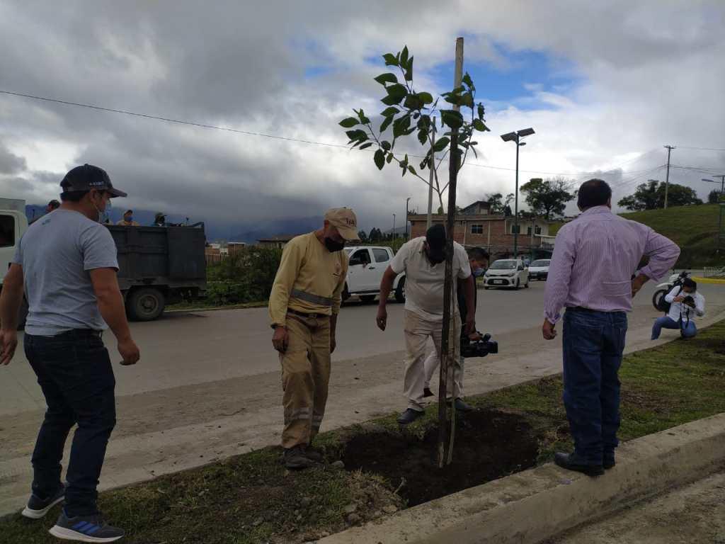 La tarde del martes 2 de febrero inició el programa de forestación del Paso Lateral.