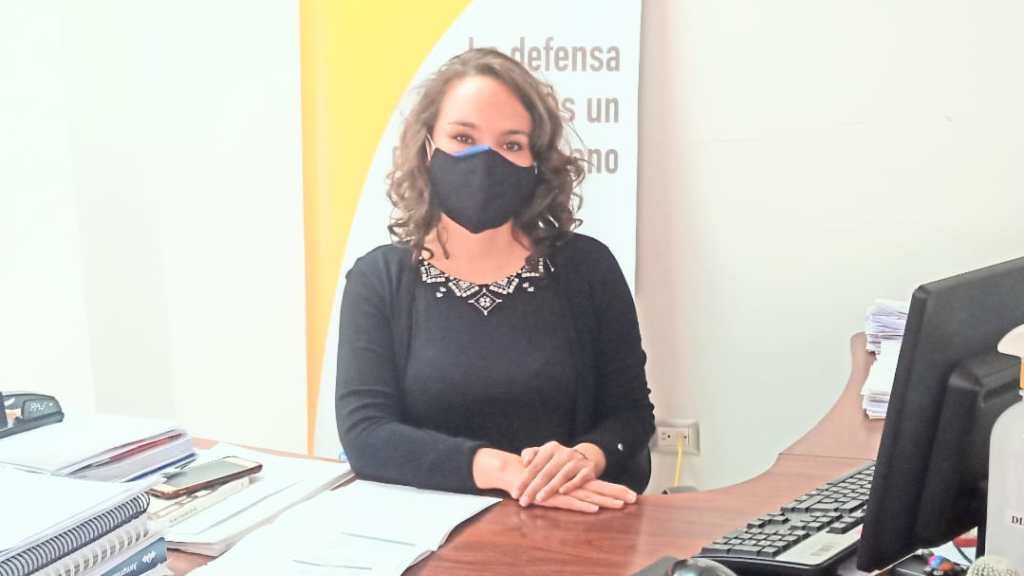 Cristina Meneses Sotomayor indica que el proyecto fue impulsado por Ángel Torres Machuca. (fotografía de archivo)