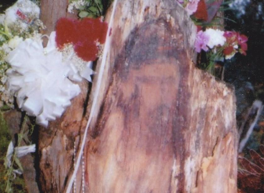 El 1 de junio de 2005, en el sector de Zamora Huayco, hubo intenso movimiento, tras la presunta aparición de la silueta de Cristo en un árbol.