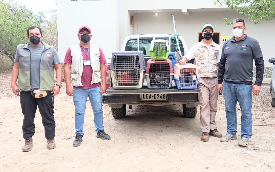 Los operativos para rescatar las especies son constantes.