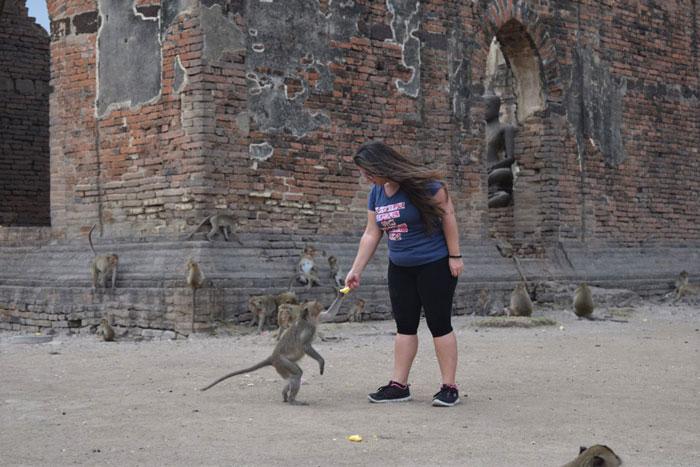 Imagen templo tailandia lopburi con monos
